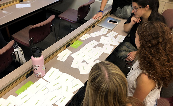 Students work with BrandSort cards